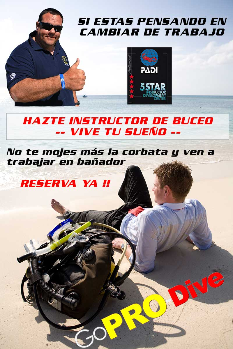Todo sobre el curso de instructor de buceo PADI part1